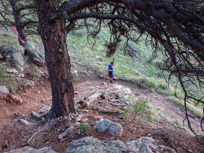 Switchbacks down Spring Creek trail.