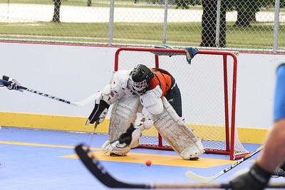 12 dek hockey edits wwm-37