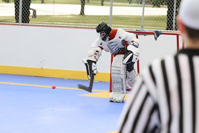 12 dek hockey edits wwm-36