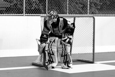 12 dek hockey edits wwm-32