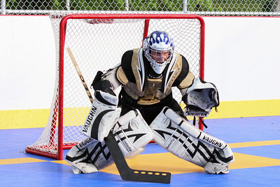 12 dek hockey edits wwm-33