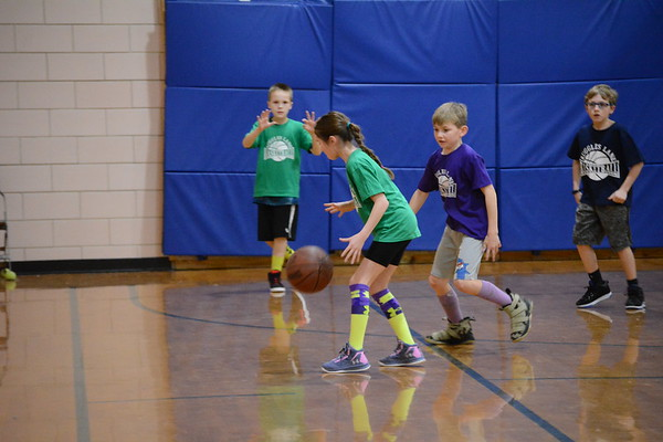 RLS basketball 2018