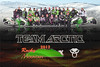 2012 Arctic Cat Poster 20x30 finished