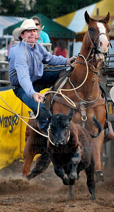 Pro Tie Down Roping cowboy Jared Kempker, Eugene, MO, slides off his horse and readies himself to take down the animal he's lassoed  Thursday, July 7, during the Hamel Rodeo at Corcoran Lions Park.  The 31st annual Hamel Rodeo and Bull Riding Bonanza stampeded into town with 399 cowboys and cowgirls, hundreds of volunteers and thousands of fans during the popular four day event.