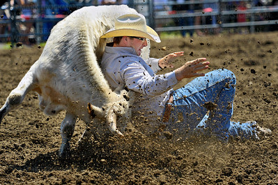 Jon Ragatz, Cassville, WI, can't get a handle during his steer wrestling run, and bags more dirt than bovine Saturday, July 7, at the Hamel Rodeo at Corcoran Lion's Park.