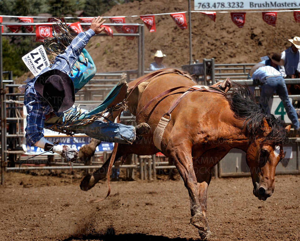 Bareback rider Jerod Johnston is thrown into the air by his bucking horse Saturday, July 12 at the 27th annual Hamel Rodeo held at Corcoran Lions Park.  Johnston scored no points for his ride.