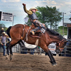 Saddle Bronc rider Travis Sheets, Hyannis, NE, shows his professional skills for a matinee audience at the Hamel Rodeo, Saturday, July 10, in Hamel.