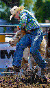 Shane Frey of Duncan, OK, gets taken for a ride during his steer wrestling run Saturday, July 7, at the Hamel Rodeo at Corcoran Lion's Park.  Frey was unable to rope the steer during this attempt.