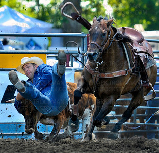 Kash Koester, Chandler, OK, gets a leg up during his steer wrestling run Saturday, July 5, at the Hamel Rodeo in Corcoran.  Koester, a professional steer wrestling champion, finished in 5.28 seconds.