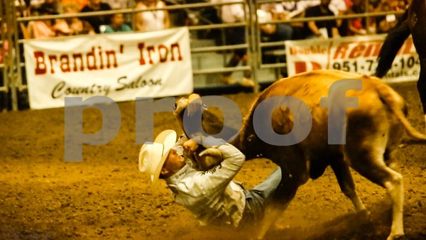 Steer Wrestler in action