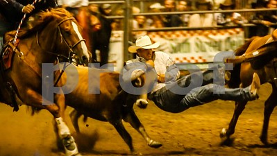 Steer Wrestler at Norco PRCA Rodeo
