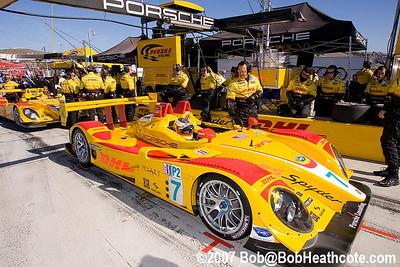 Pense Porsche's ready for the grid recon lap