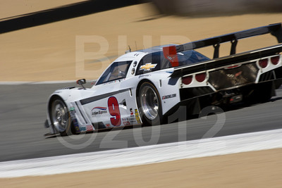 #9 Darren Law, Joao Barbosa: Action Express Racing Corvette DP
