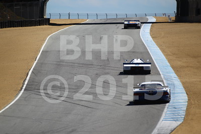 BHP40016