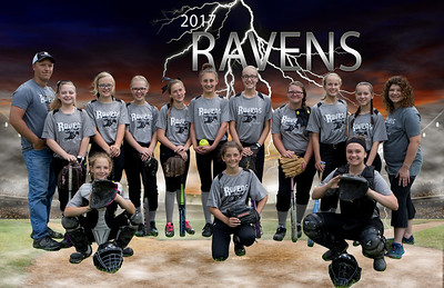 Ravens11x17 poster with coachspsd
