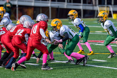20141019-120024_[Razorbacks 4G - G8 vs  Laconia]_0029_Archive