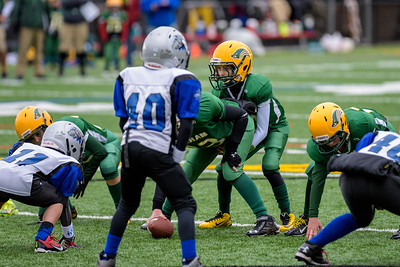 20141102-093147_[Razorbacks 4G - NH State Championship vs  Londonderry Wildcats]_0153_Archive