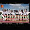 VolleyballFMa16x20-1
