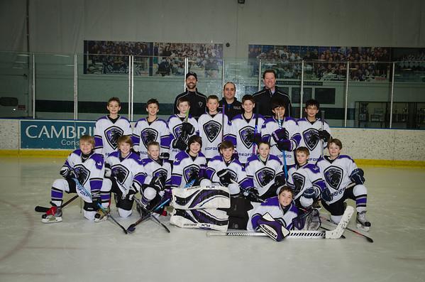 Redford Kings Hockey