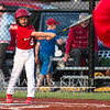 RedsBaseball-7
