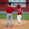 RedsBaseball-15