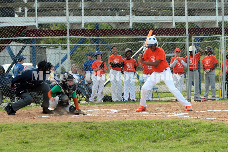 1_little_league_207935