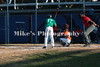 1_little_league_216141
