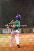 1_little_league_214452