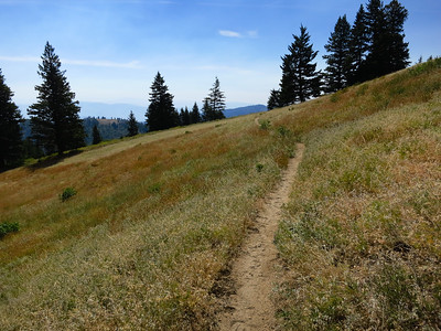 Late summer on Elk Meadows trail is still grand.