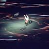 Rio Olympics 05.08.2016 Christian Valtanen _CV42130-2