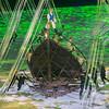 Rio Olympics 05.08.2016 Christian Valtanen _CV41989-3