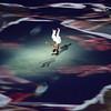 Rio Olympics 05.08.2016 Christian Valtanen _CV42133