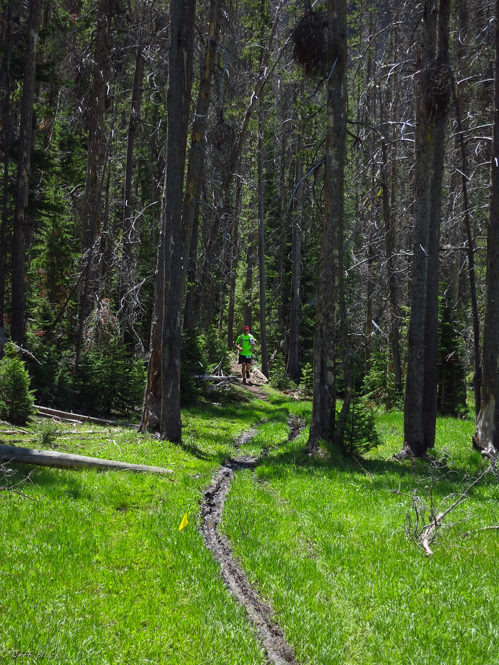 John H. emerges from the trees into an alpine meadow.