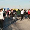 TTrot pre race 016