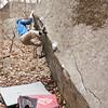 2012-01-01 Govenor Stable Jpeg 5683