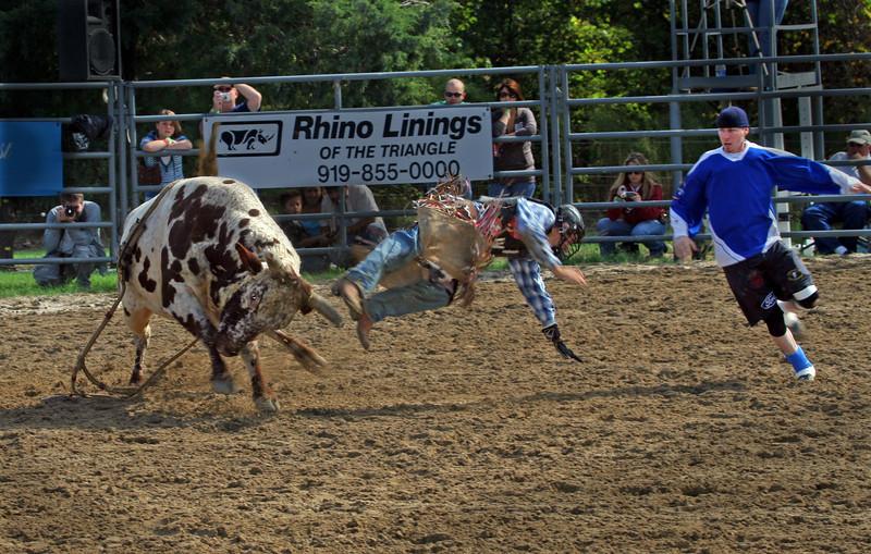 Bull 1, Cowboy 0