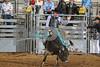 2017 Castle Rock Bulls 7PM_0057
