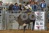 2017 Castle Rock Bulls 7PM_0170
