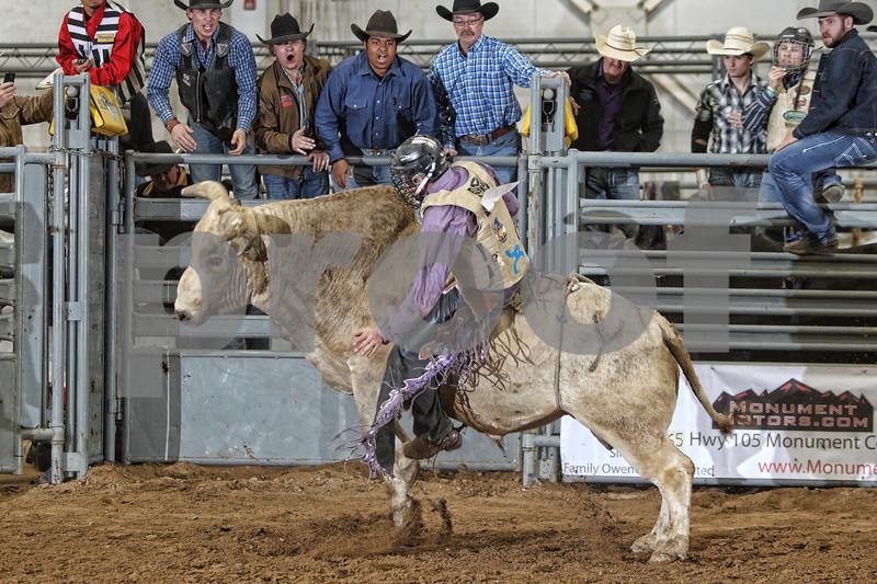 2017 Castle Rock Bulls 7PM_0041