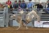 2017 Castle Rock Bulls 7PM_0038