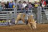 2017 Castle Rock Bulls 7PM_0125