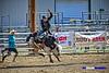 2018 Rodeo CSHSR Jeffco_0278_On1 logo