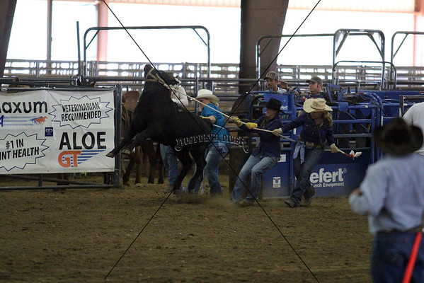 All Girl Rodeo Calf Race