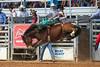 20150313_Arcadia Rodeo-17