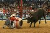 20140628_Davie Pro Rodeo-7