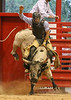 20140628_Davie Pro Rodeo-12