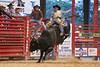 20140628_Davie Pro Rodeo-20