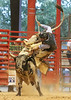 20140628_Davie Pro Rodeo-14
