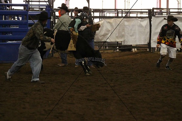 Hill Country Jr Rodeo 7 Bulls