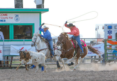 Day one of the Panhandle High School Rodeo, at Scotts Bluff County Fairgrounds in Mitchell, NE. In the Team Roping Ty Leisy of Alliance (in pink) and Trevor Leisy of Alliance.